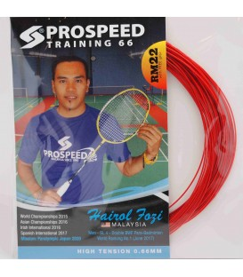 Prospeed Training 66 badmintonstreng